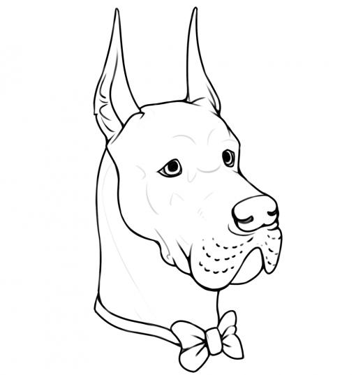 Noble Dog Great Dane portrait lineart by Smirking Raven