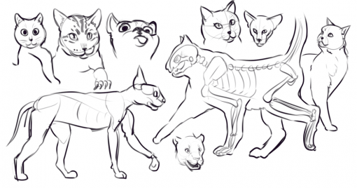 Drawing drill #12: <br/>Hips, hands, arms, faces and cats by Smirking Raven