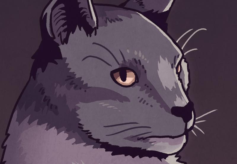 Cat Mr. Wuss close-up by Smirking Raven