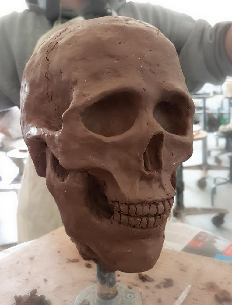 Skull studies clay by Smirking Raven