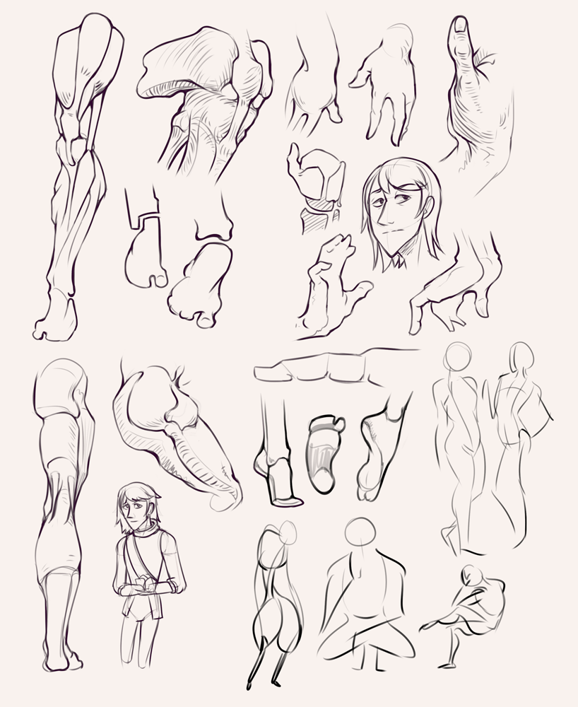 Drawing drill&nbsp;#31: <br>Bridgman studies, leg, gesture and hands by Smirking Raven