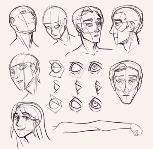 Faces studies drawing anatomy - Drawing drills by Smirking Raven