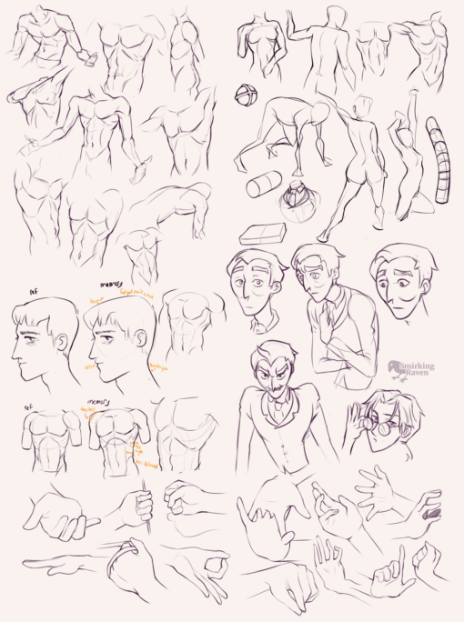 Torso, abdominal muscles and hands: <br/>Drawing drill #88 by Smirking Raven