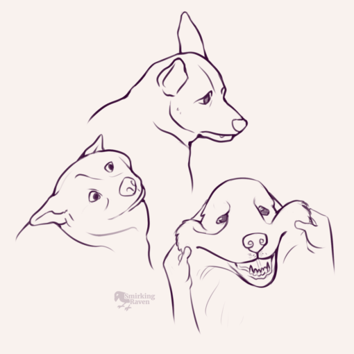 Torsos, doggos, faces, back from the dead : <br/>Drawing drill#94 by Smirking Raven