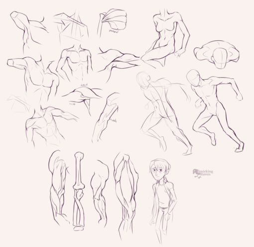 Arms, shoulders and torso anatomy : <br/>Drawing drill#94.5 by Smirking Raven
