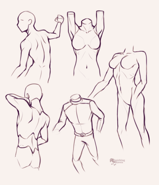Torso proportion - Drawing Drill by Smirking Raven